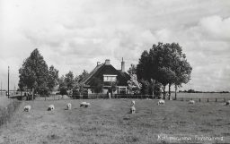 Kollumerpomp 1956