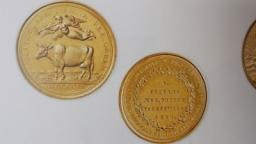 De gouden medaille van Sijbrandus Fockema